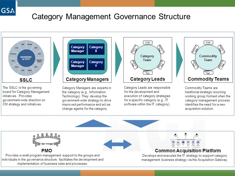Category Management Governance Structure