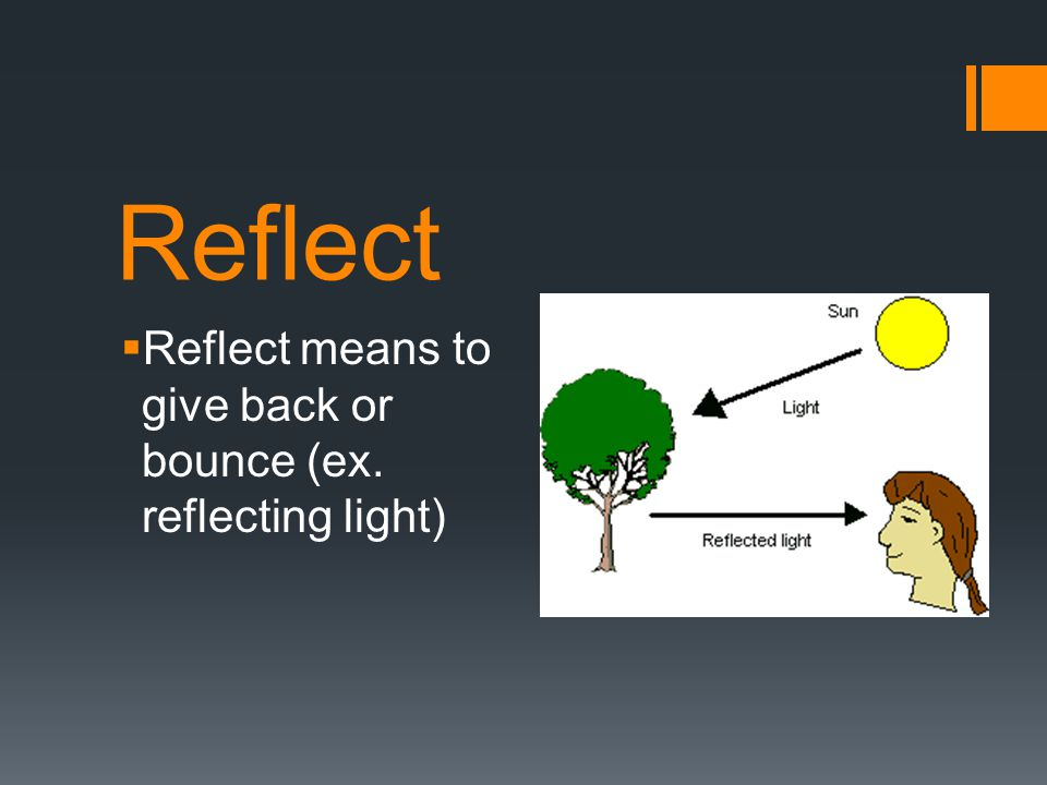 photos reflect