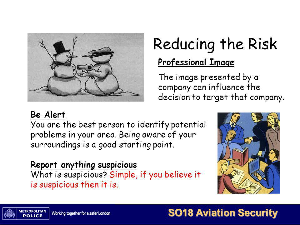Reducing the Risk Professional Image