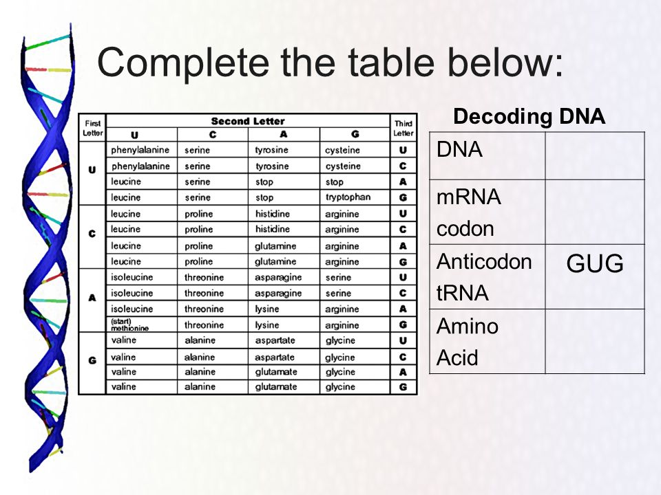 Decoding Dna Worksheet - Ppt Video Online Download
