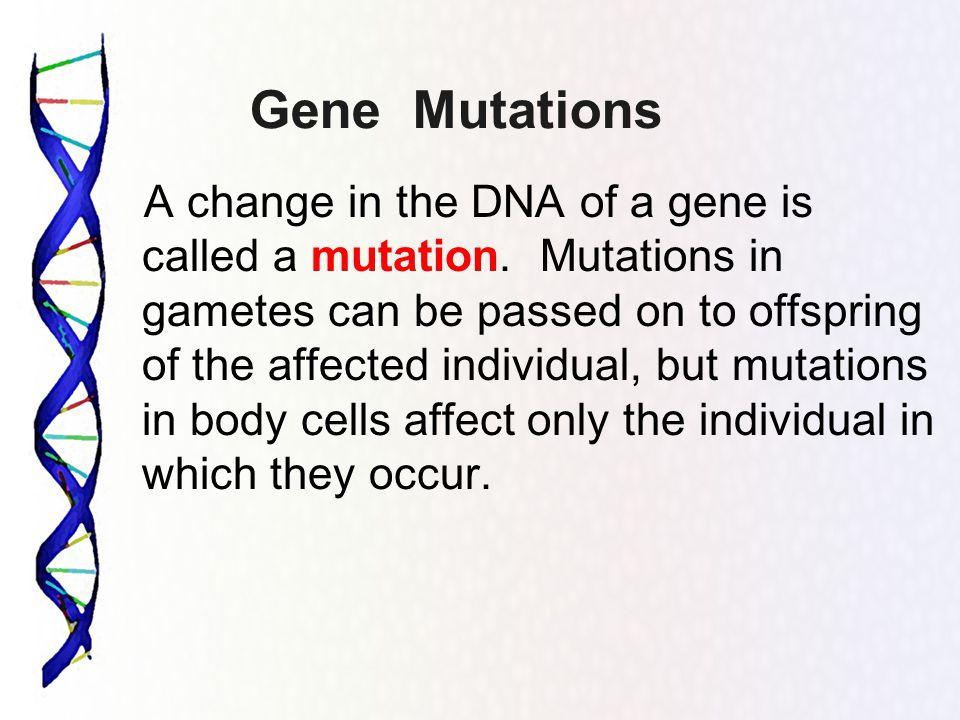 Decoding DNA Worksheet ppt video online download – Genetic Mutation Worksheet