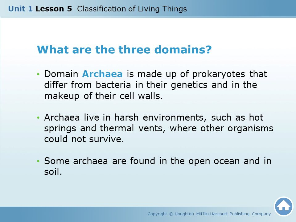 What are the three domains