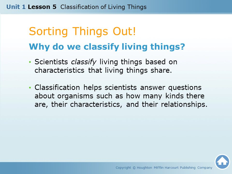 Sorting Things Out! Why do we classify living things