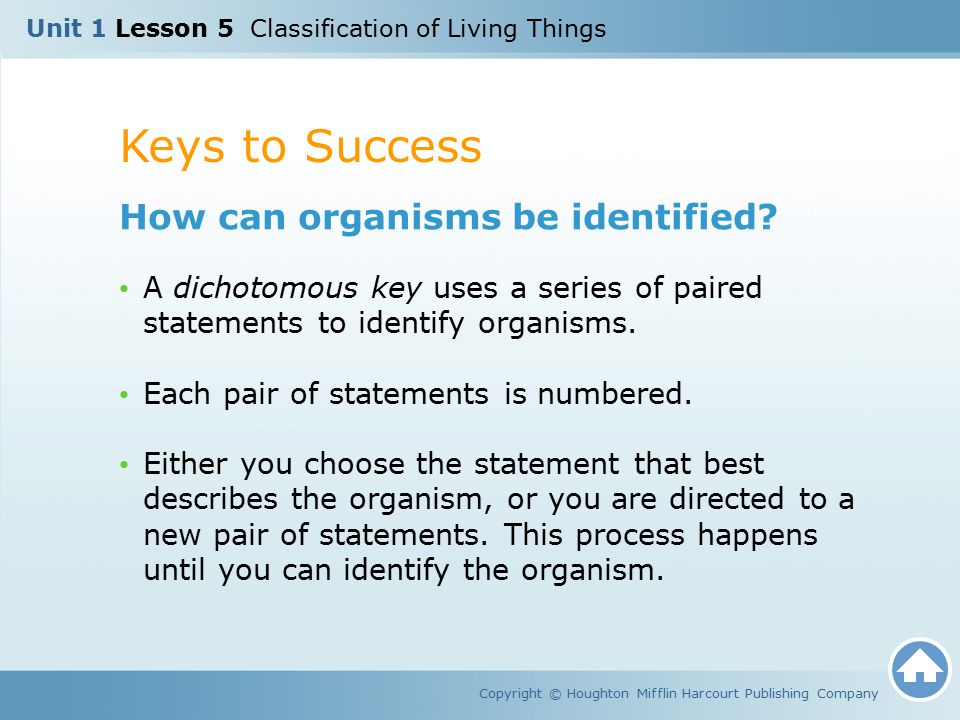 Keys to Success How can organisms be identified