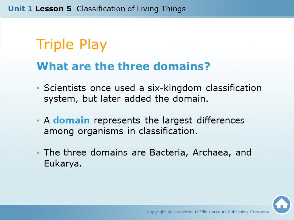Triple Play What are the three domains
