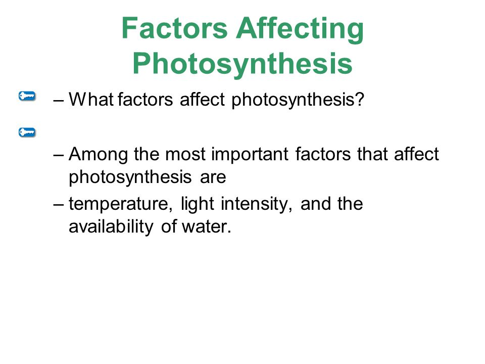 factors that influence photosynthesis The rate of photosynthesis can be limited by the factors: temperature, carbon dioxide concentration and light intensity (draw graphs of each factor vs rate of photosynthesis) temperature increases the rate up to a point and then quickly drops off this is because the reaction has more kinetic energy up to a.