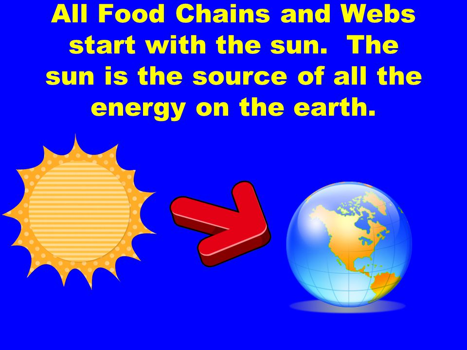 All Food Chains and Webs start with the sun