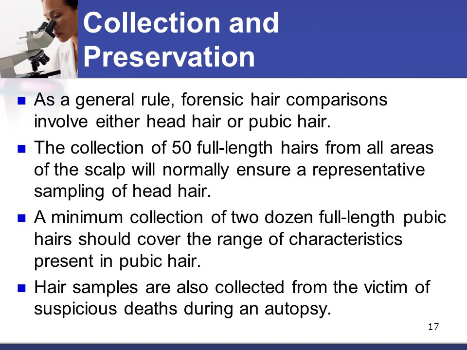 Trace Evidence HAIR, FIBERS & PAINT. - ppt download