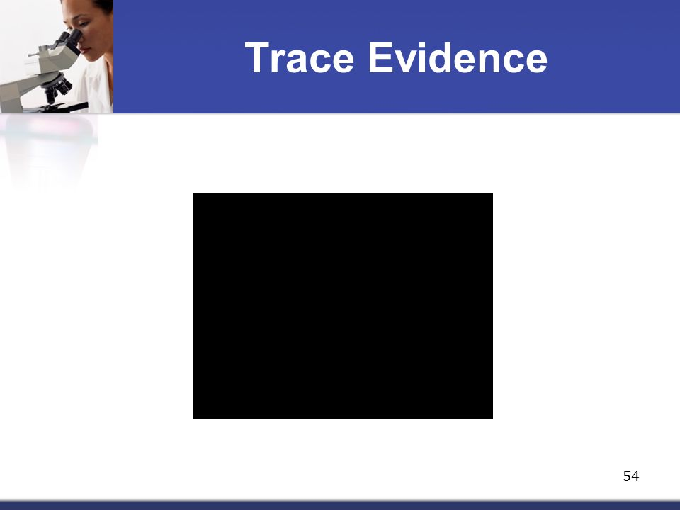 how can paint and fiber evidence Trace fiber evidence under magnification  trace paint evidence under magnification paint can be transferred from one vehicle to another in an accident an.