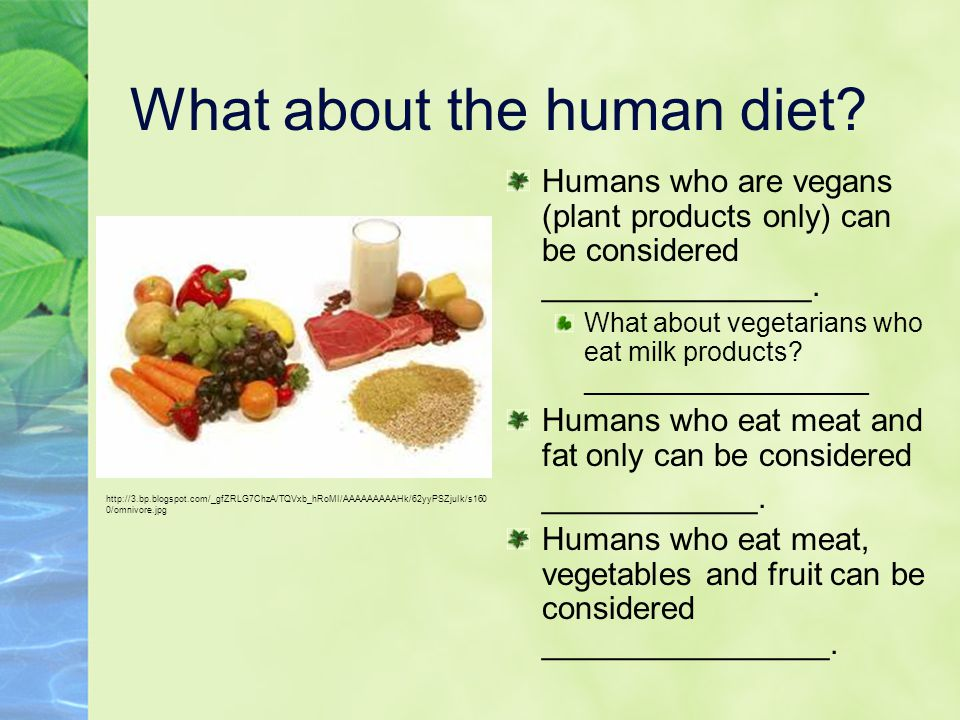What about the human diet