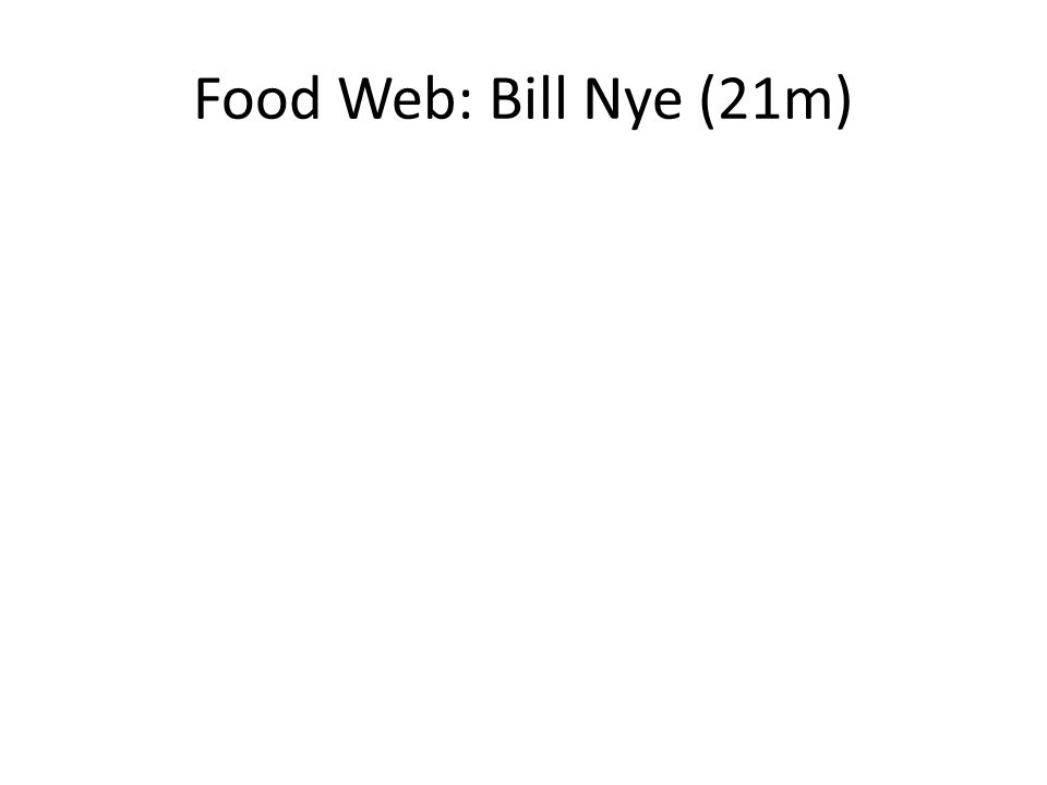 Notice the arrows Are they pointing in the right direction ppt – Bill Nye Food Web Worksheet