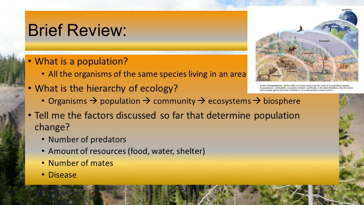 2 1 ecology economics worksheet answers