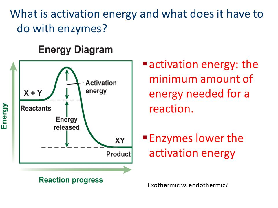 what is effect of catalyst on activation energy explain it briefl