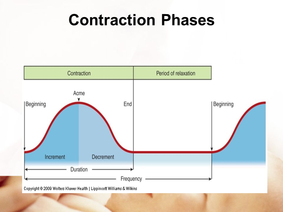 Contraction Phases