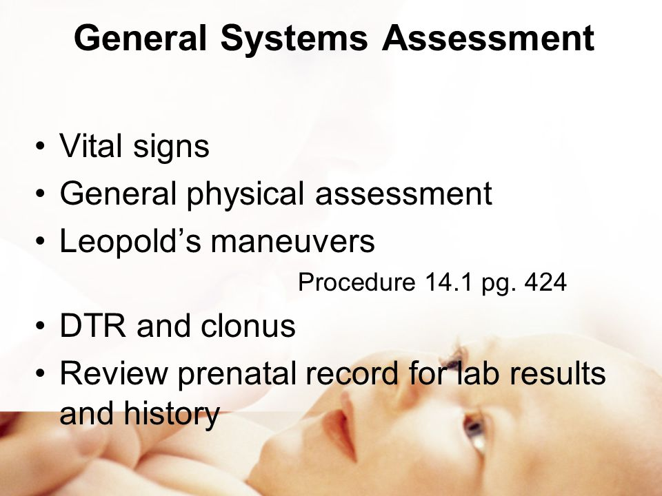 General Systems Assessment