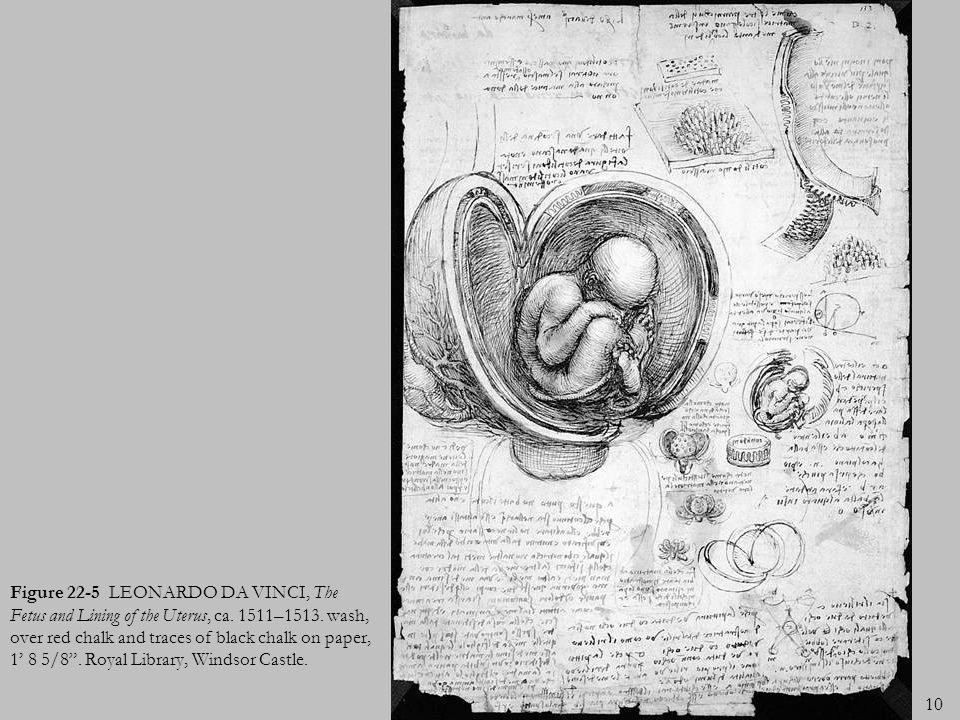 Figure 22-5 LEONARDO DA VINCI, The Fetus and Lining of the Uterus, ca