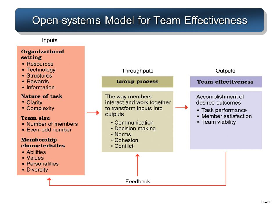 Open-systems Model for Team Effectiveness