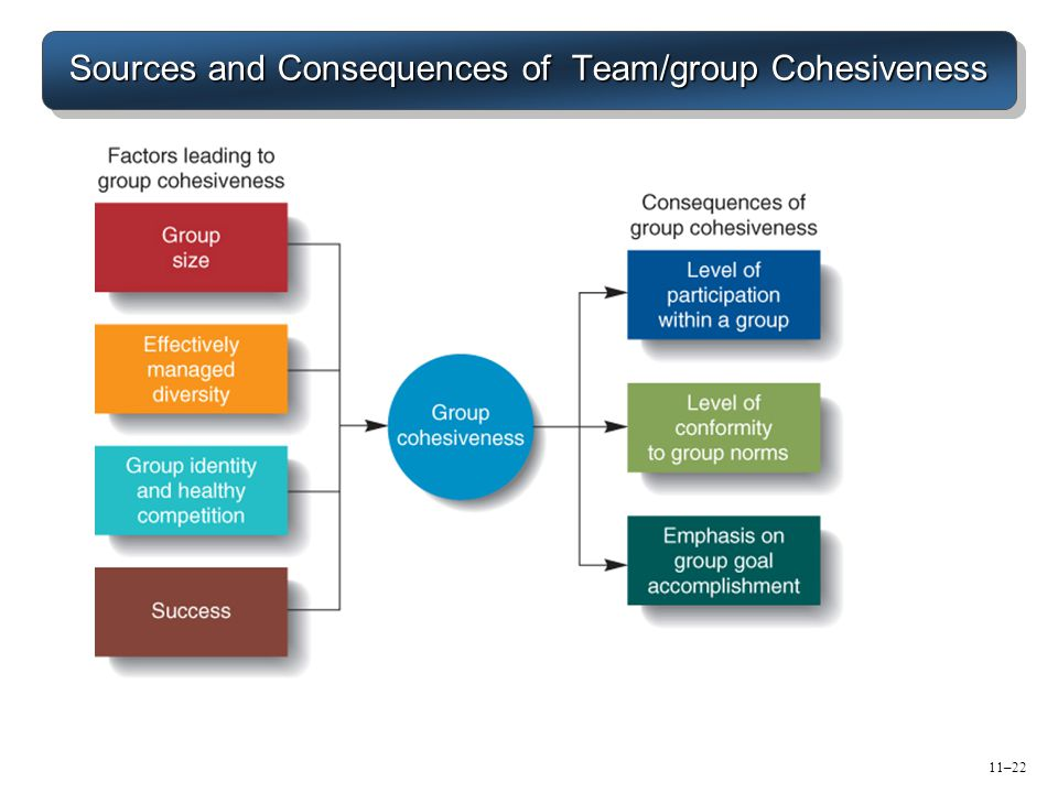 Sources and Consequences of Team/group Cohesiveness