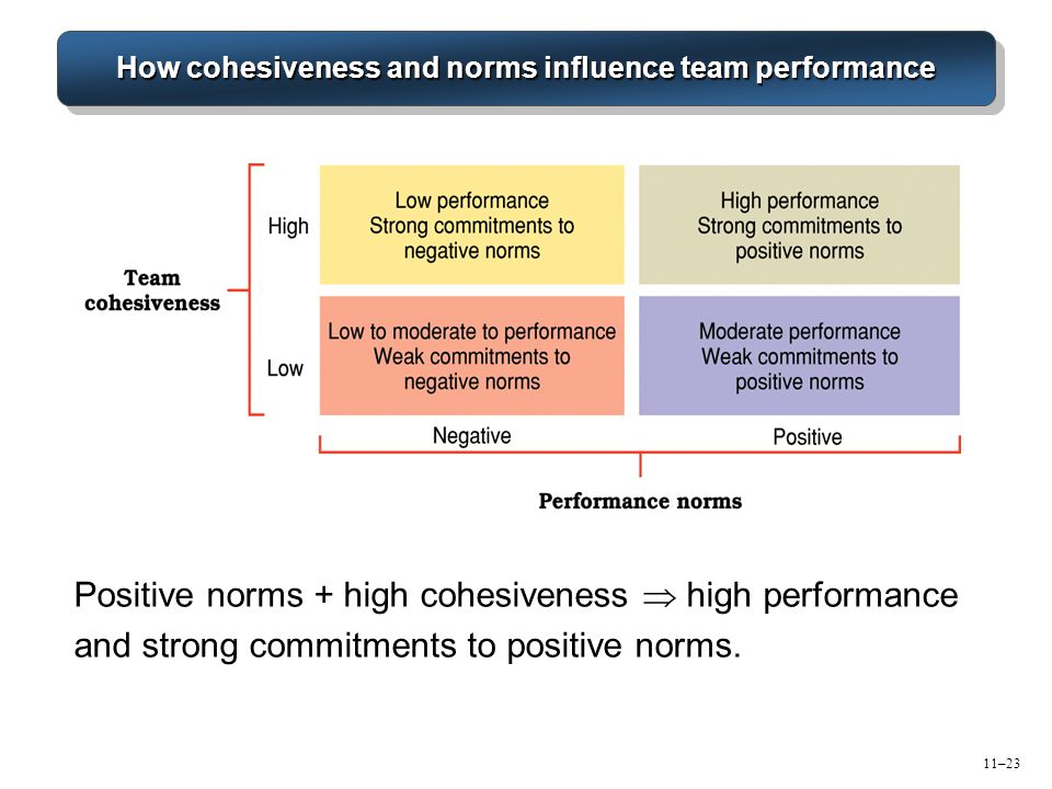 How cohesiveness and norms influence team performance