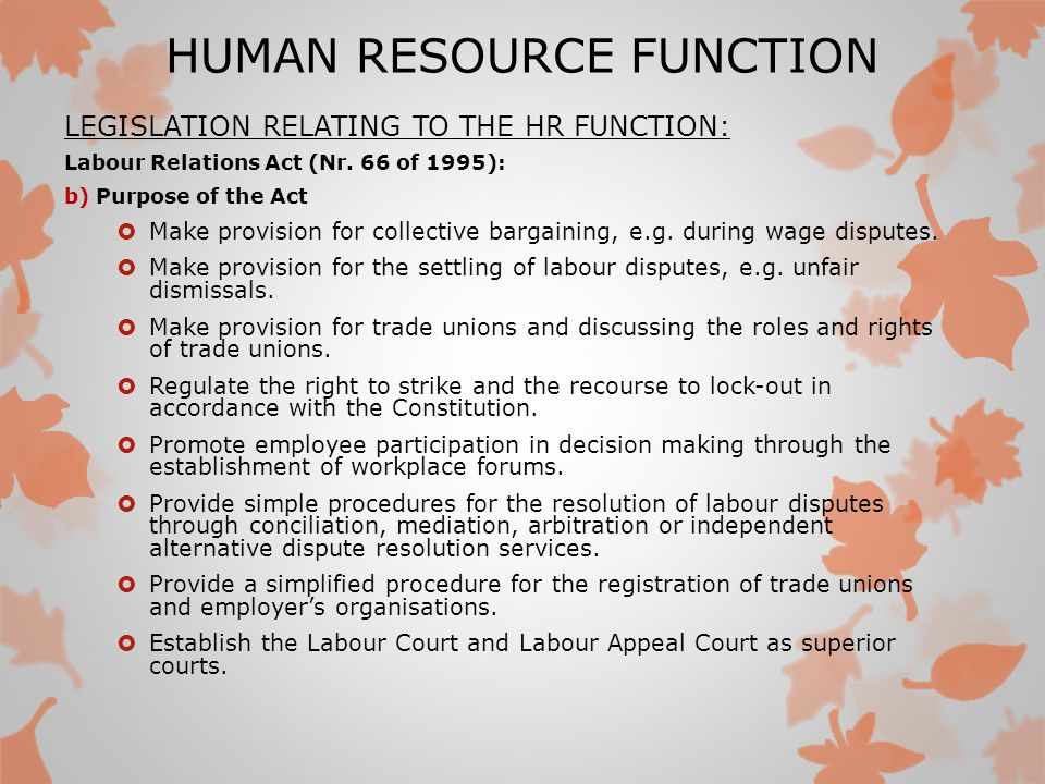 Major Functions of Human Resource Management (287 Words)