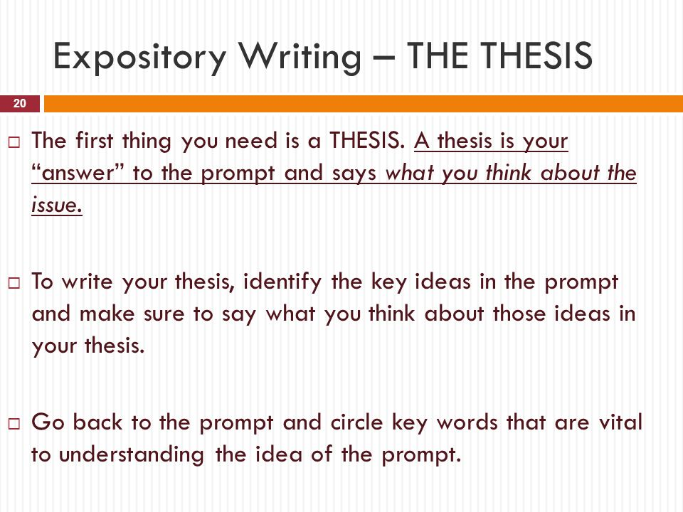 Expository Writing – THE THESIS