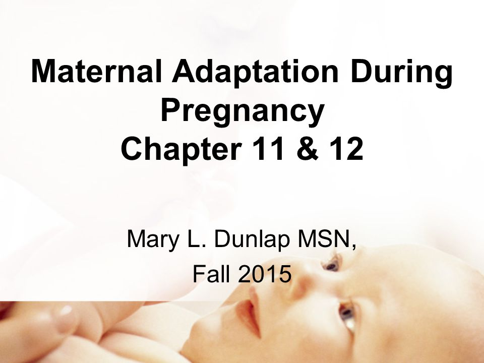 Maternal Adaptation During Pregnancy Chapter 11 & 12