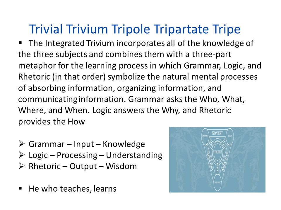 Trivial Trivium Tripole Tripartate Tripe