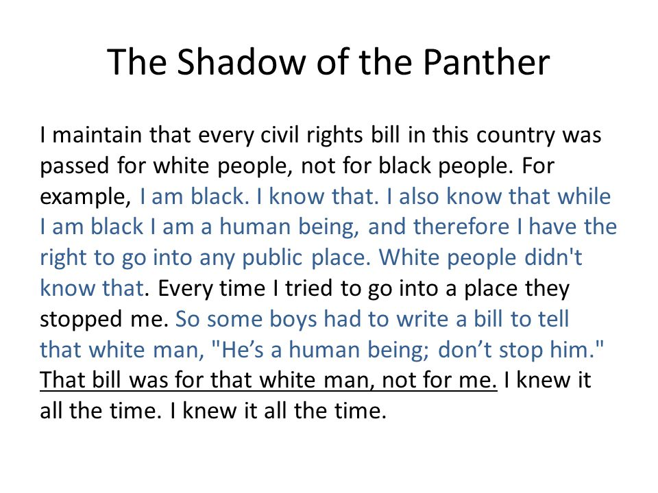 The Shadow of the Panther