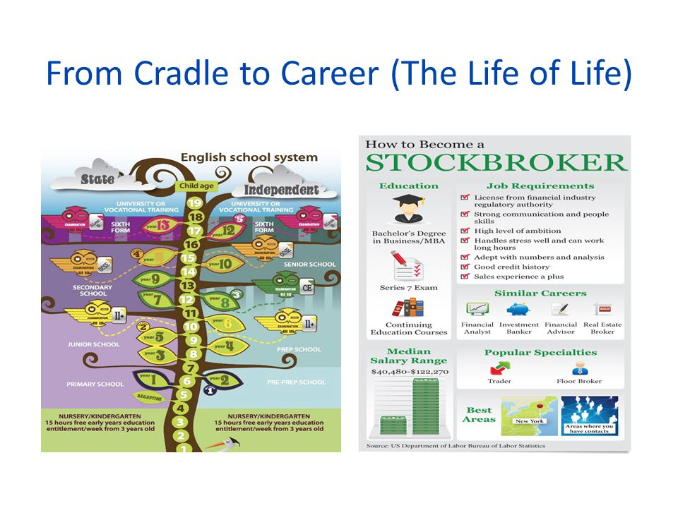 From Cradle to Career (The Life of Life)