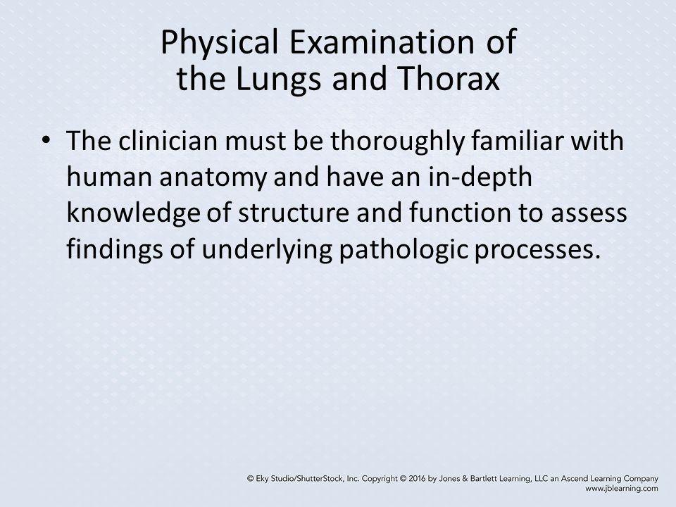 Physical Examination of the Lungs and Thorax
