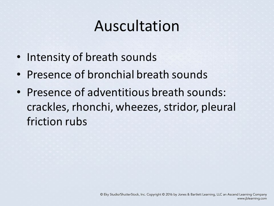 Auscultation Intensity of breath sounds