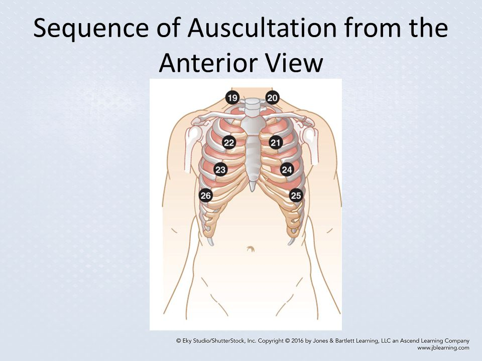 Sequence of Auscultation from the Anterior View