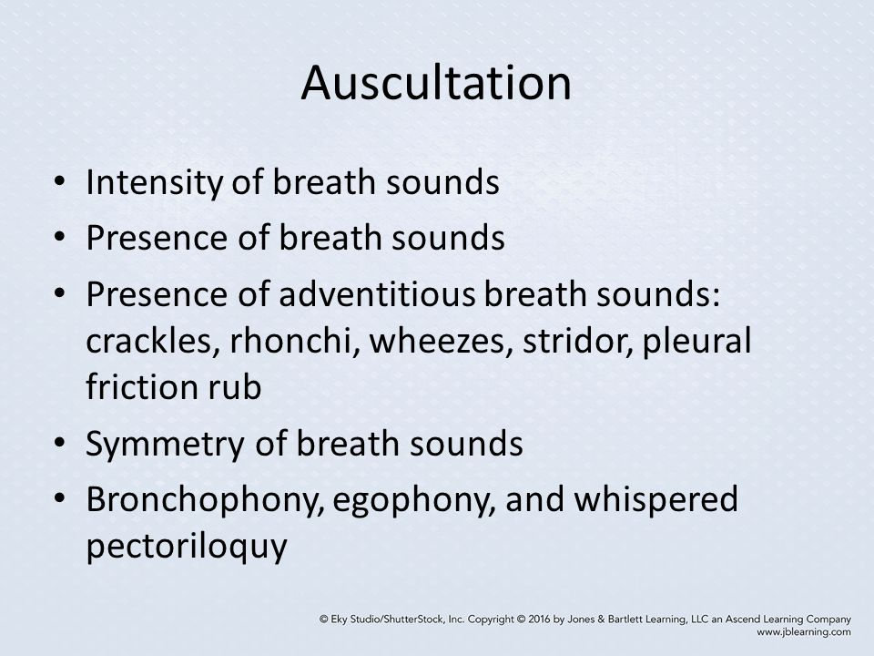 Auscultation Intensity of breath sounds Presence of breath sounds
