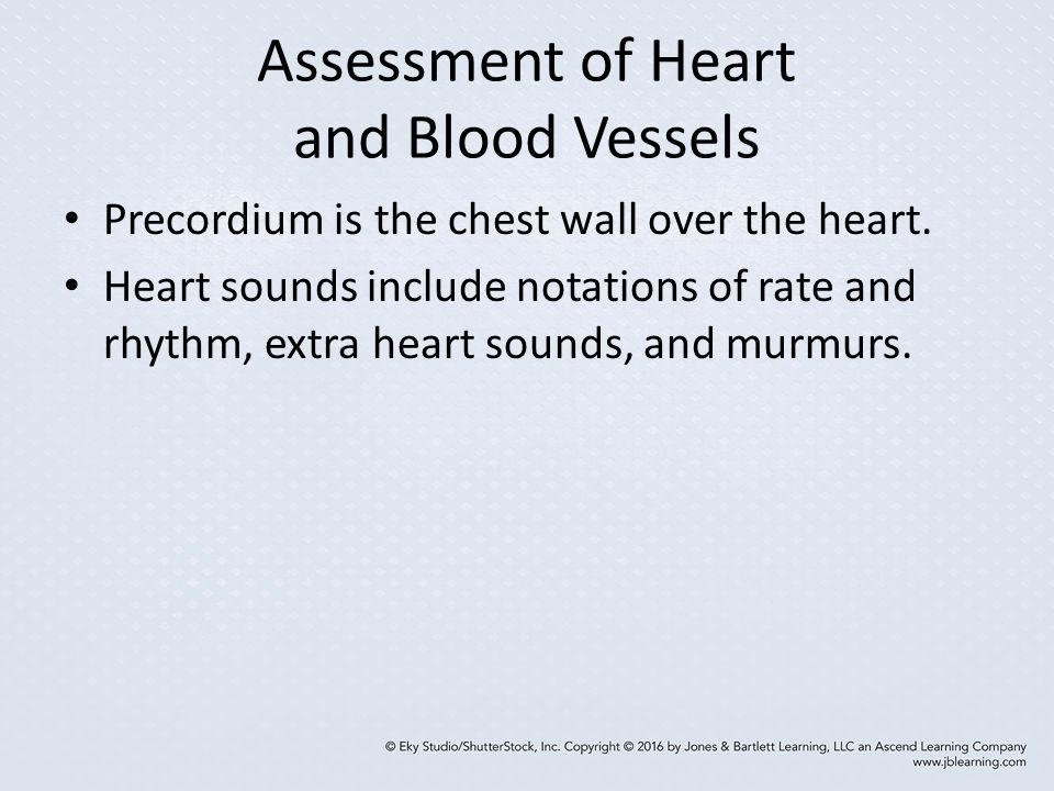 Assessment of Heart and Blood Vessels