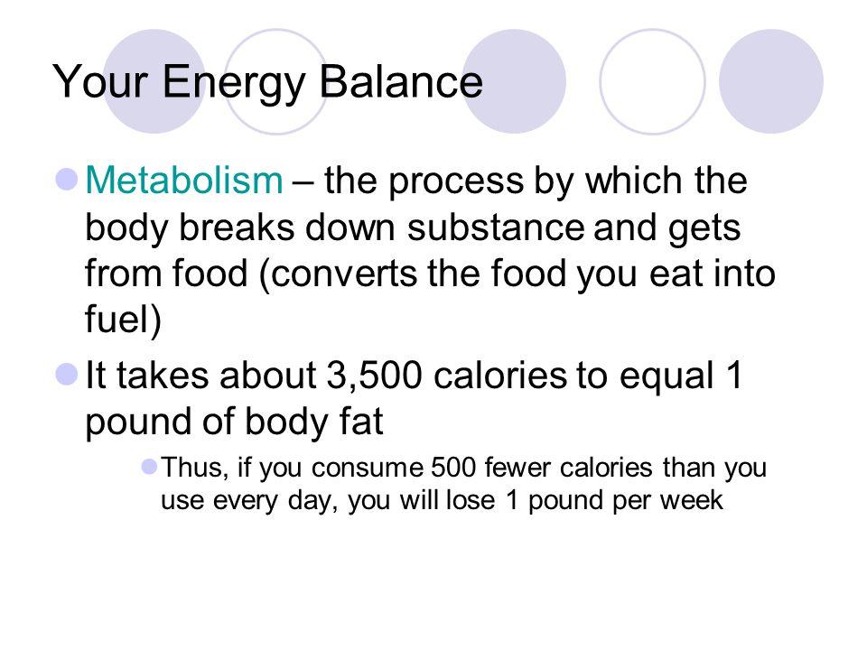 Fast metabolism diet vegetarian meal plan