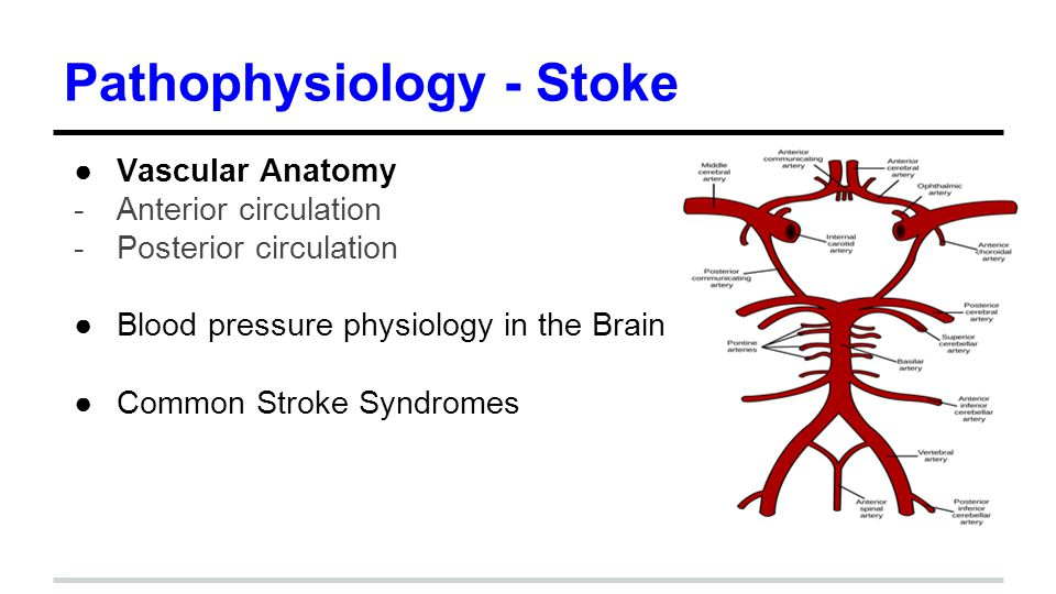 Hypertension and Stroke - ppt download