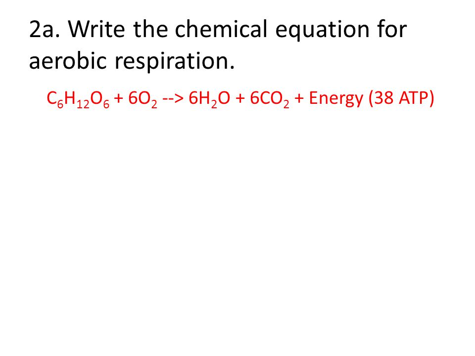 Write a general neutralisation word equation for respiration