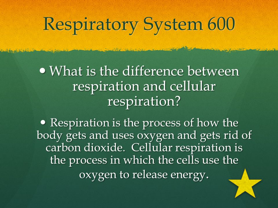 What is the difference between respiration and cellular respiration
