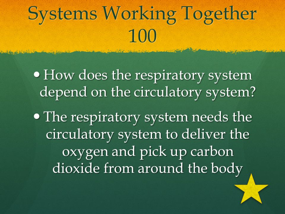 Systems Working Together 100