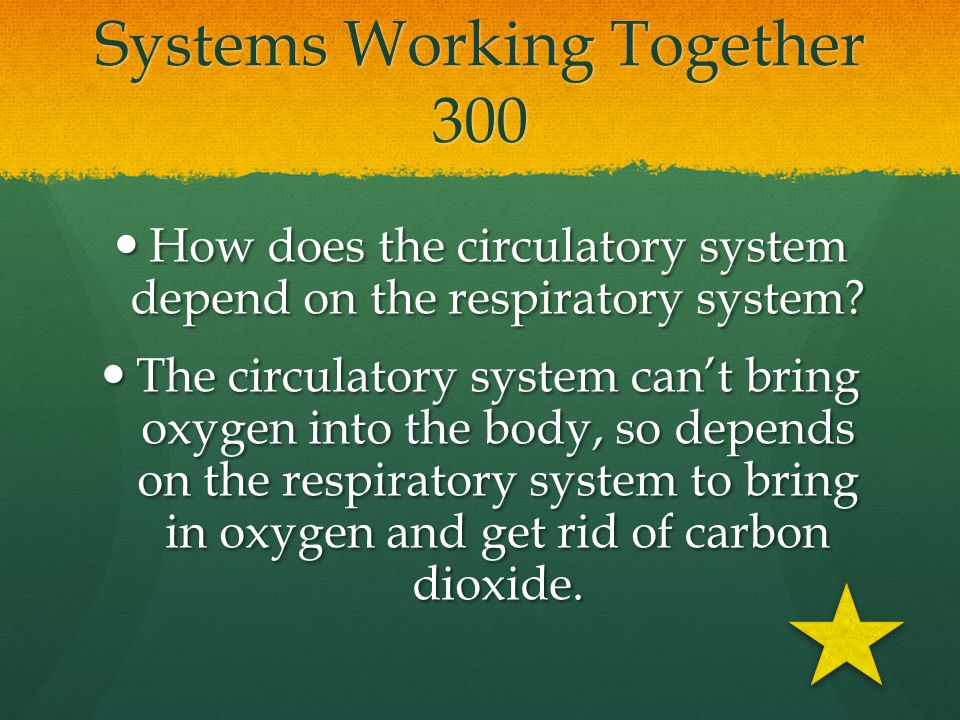 Systems Working Together 300