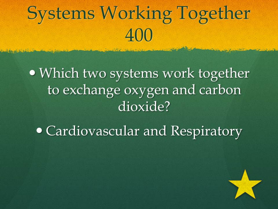 Systems Working Together 400