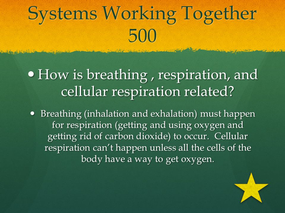 Systems Working Together 500