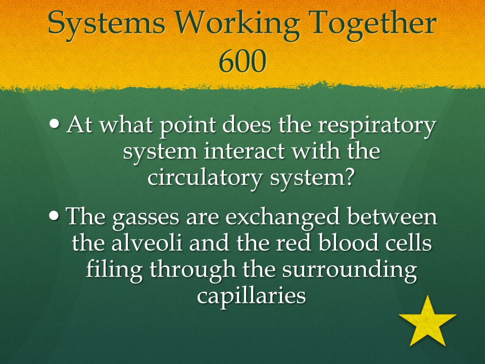 Systems Working Together 600
