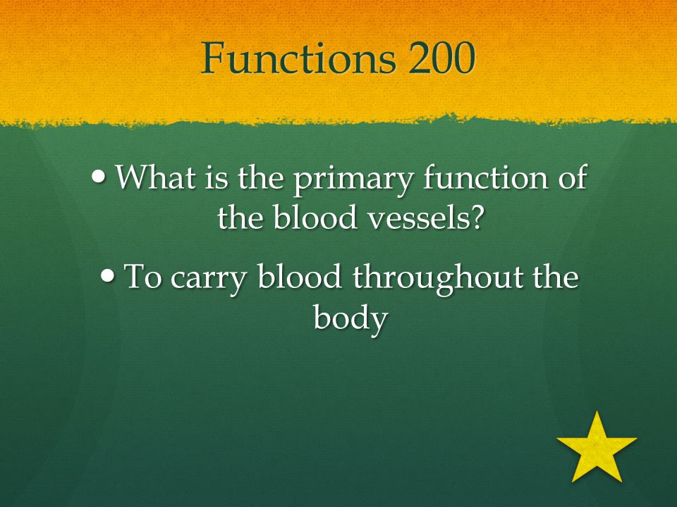 Functions 200 What is the primary function of the blood vessels