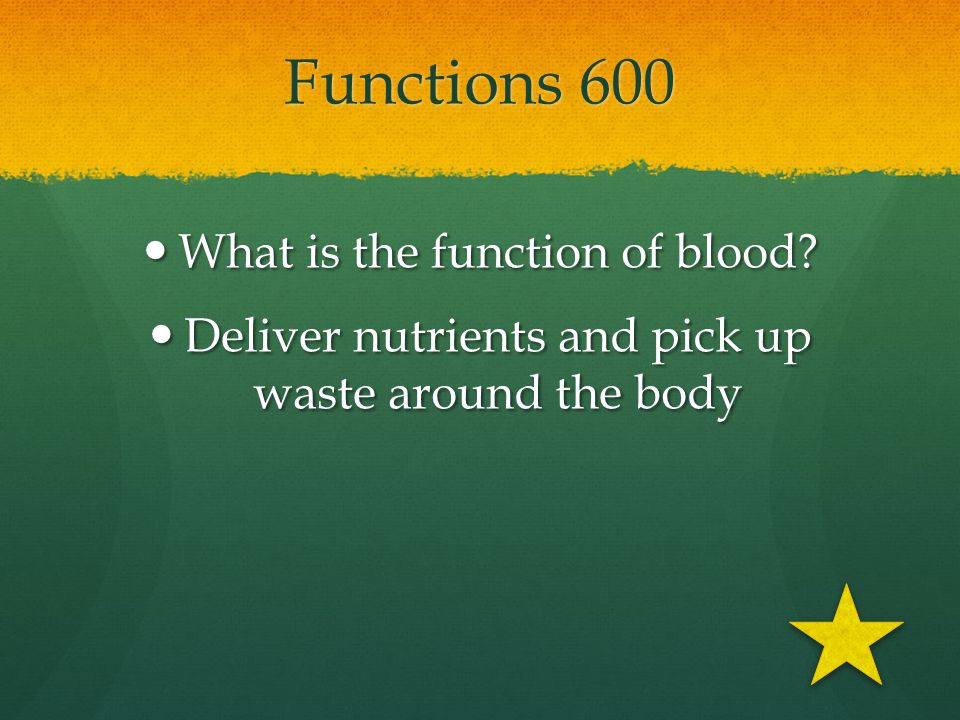 Functions 600 What is the function of blood