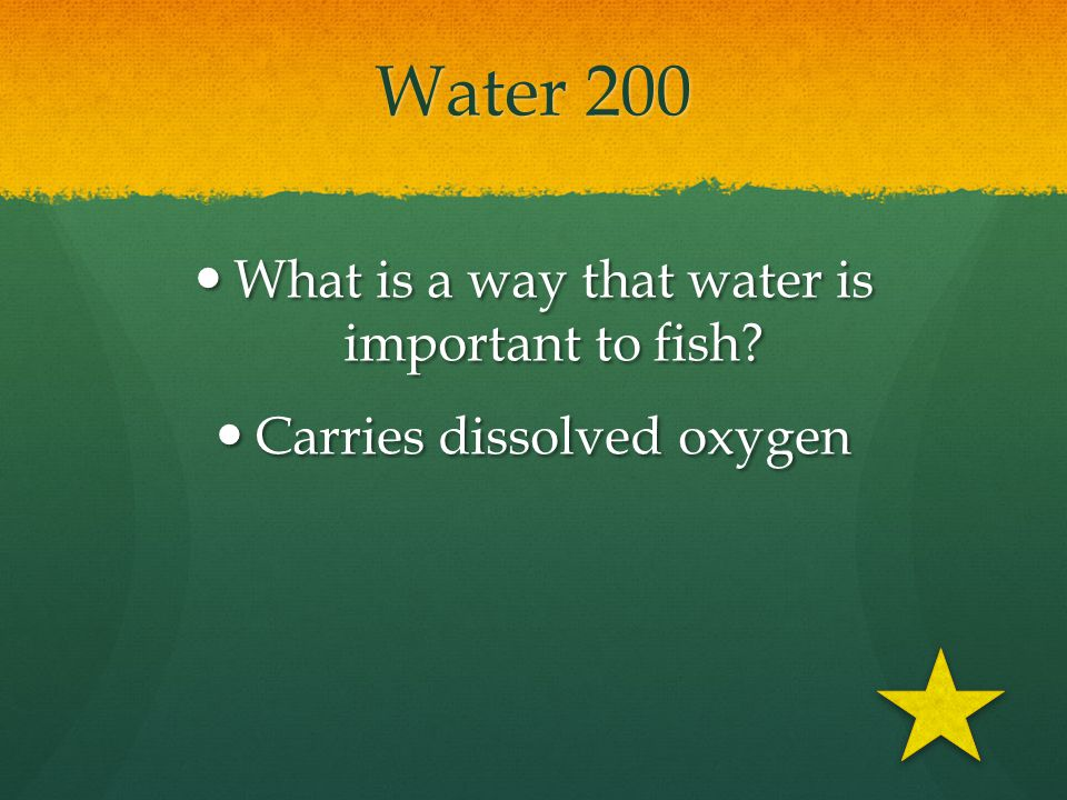 Water 200 What is a way that water is important to fish