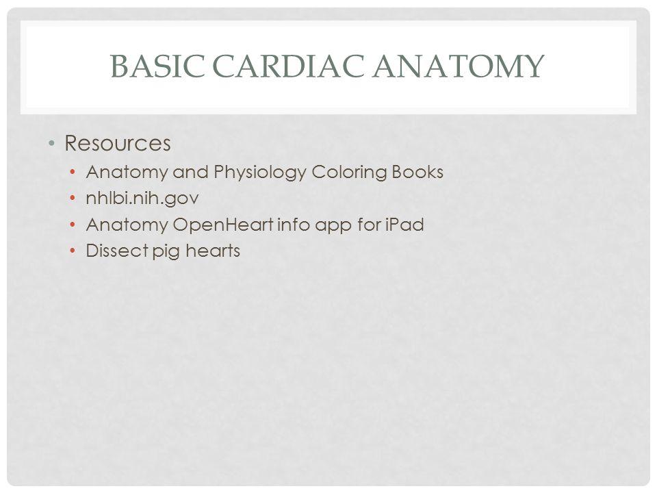65 Anatomy Coloring Book Ipad App
