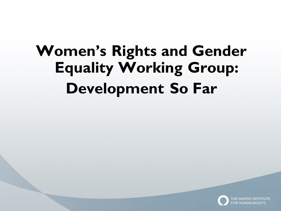 Women's Rights and Gender Equality Working Group: