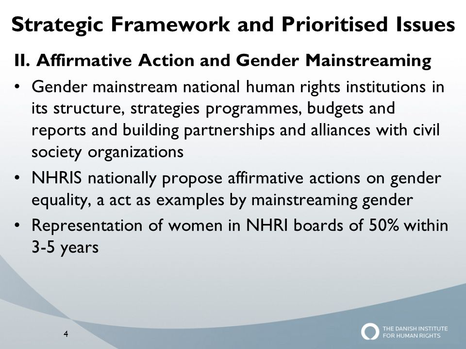 Strategic Framework and Prioritised Issues