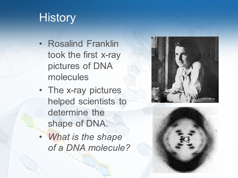 History Rosalind Franklin took the first x-ray pictures of DNA molecules. The x-ray pictures helped scientists to determine the shape of DNA.